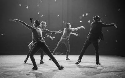 Review – Flow – Taneční zóna